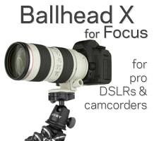 Ballhead + Focus